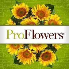 Pro Flowers Logo